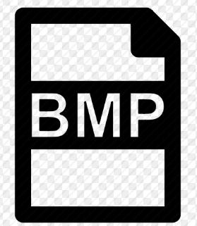 características de BMP