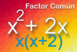 características de Factor Común