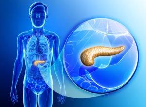 características del Páncreas