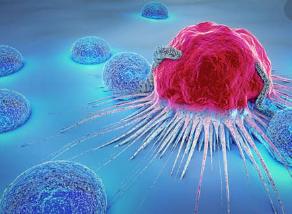 características de Célula Cancerosa