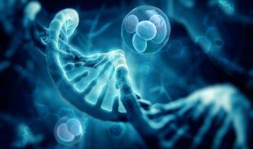 características de los Genes