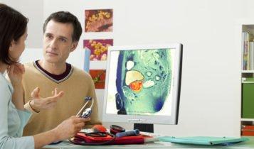 características de la Próstata