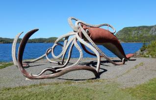 características de los Calamares Gigantes